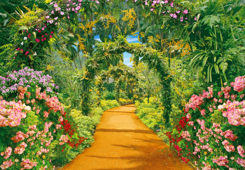 Flower alley royalty free stock photos