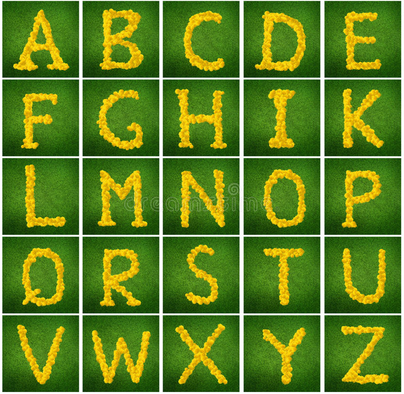 Flower alphabet royalty free stock image
