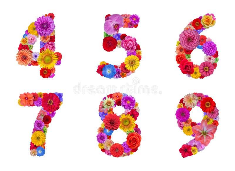 Flower alphabet royalty free stock photo
