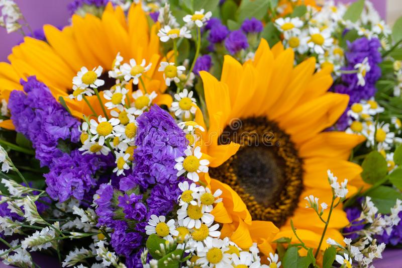 Flower arrangement, a bouquet with sunflowers and field daisies royalty free stock images