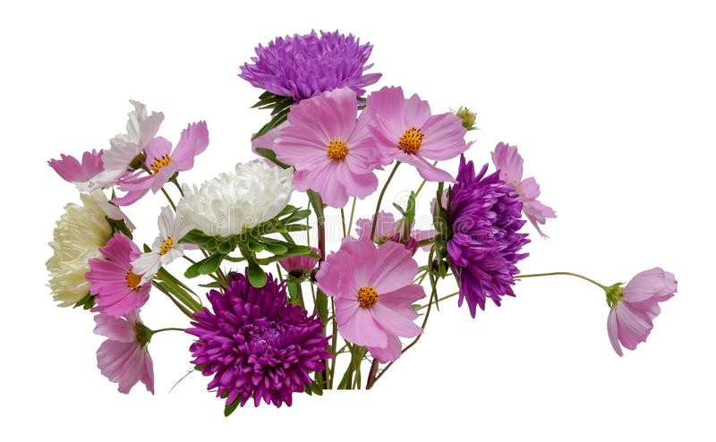 Flower arrangement bouquet of white purple asters and pink white cosmos isolated on white background stock images