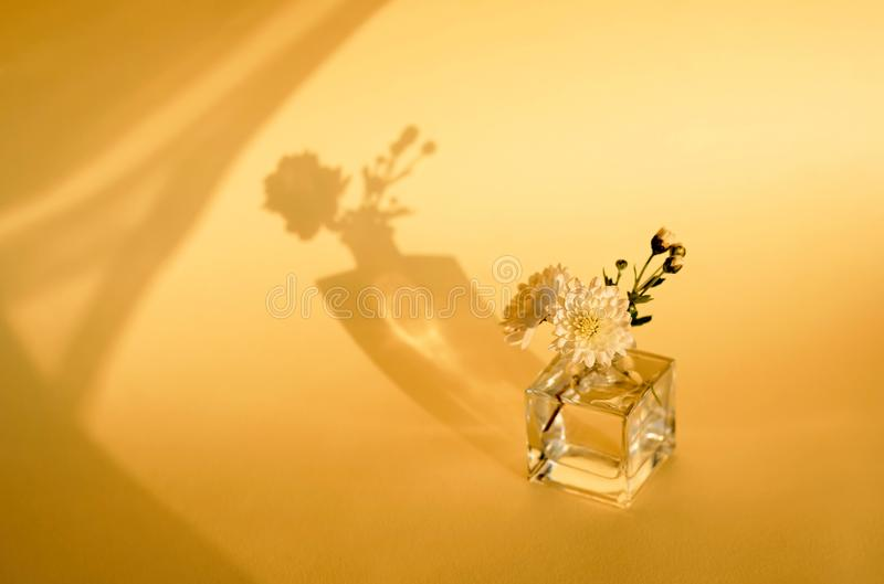 Flower arrangement on a yellow background. Yellow chrysanthemum. The concept of minimalism. stock photo