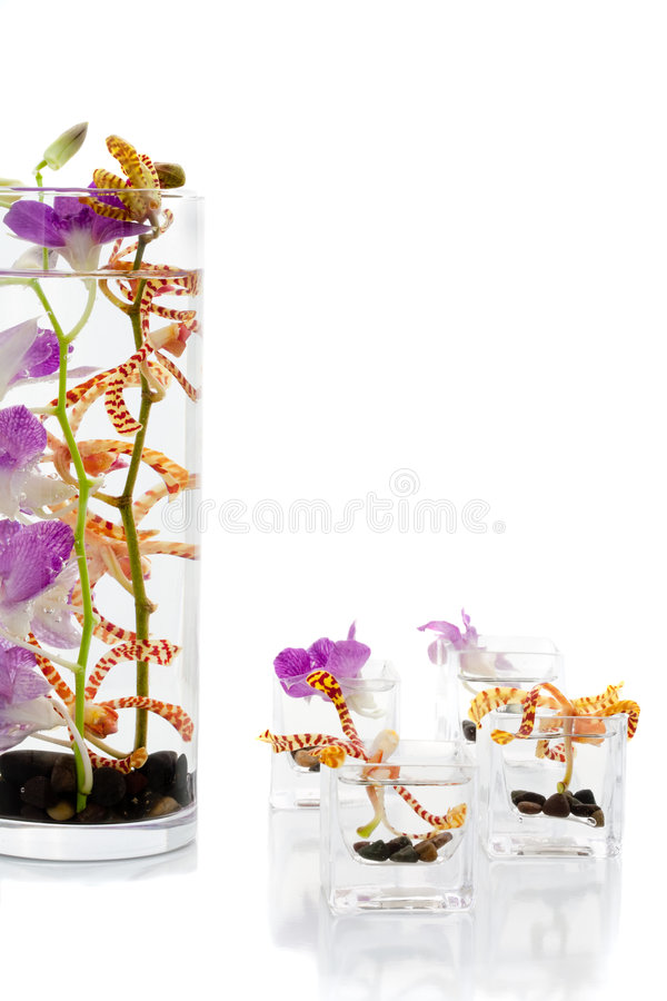 Flower arrangements. A set of flower arrangements with purple flowers royalty free stock images