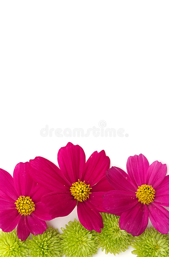 Download Flower Background Royalty Free Stock Images - Image: 178599