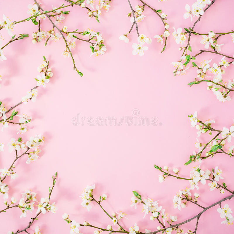 Flower background floral round frame of spring white flowers on download flower background floral round frame of spring white flowers on pink background flat mightylinksfo