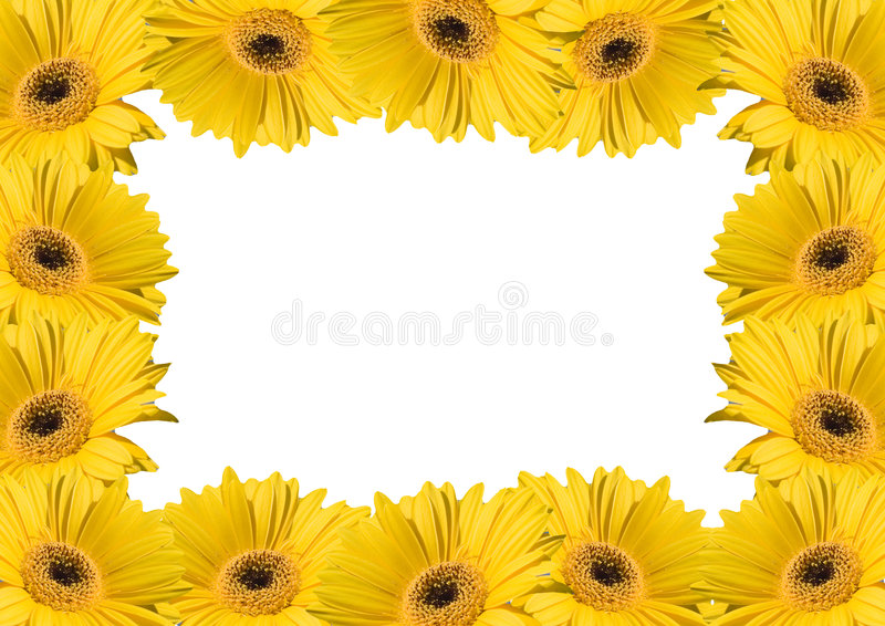 Flower background frames royalty free stock images