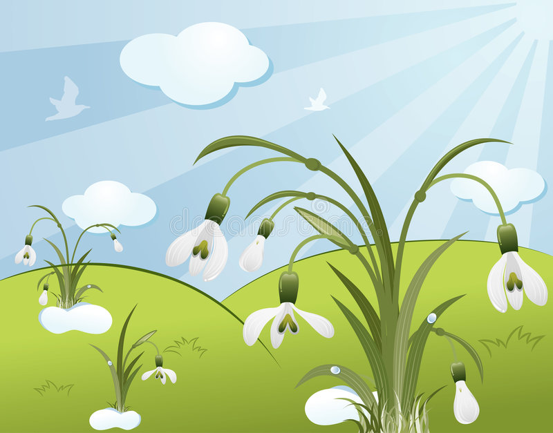 Flower background with snowdro royalty free illustration