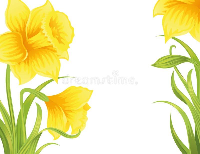 Flower Background. Stock Vector