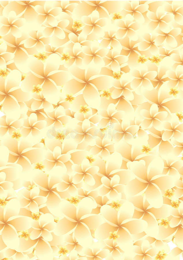 Flower Backgrounds royalty free stock photo