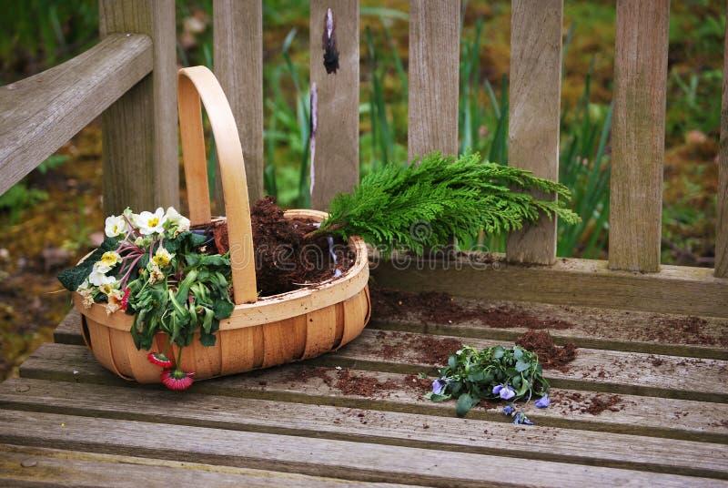 Download Flower Basket Stock Photo - Image: 24902730