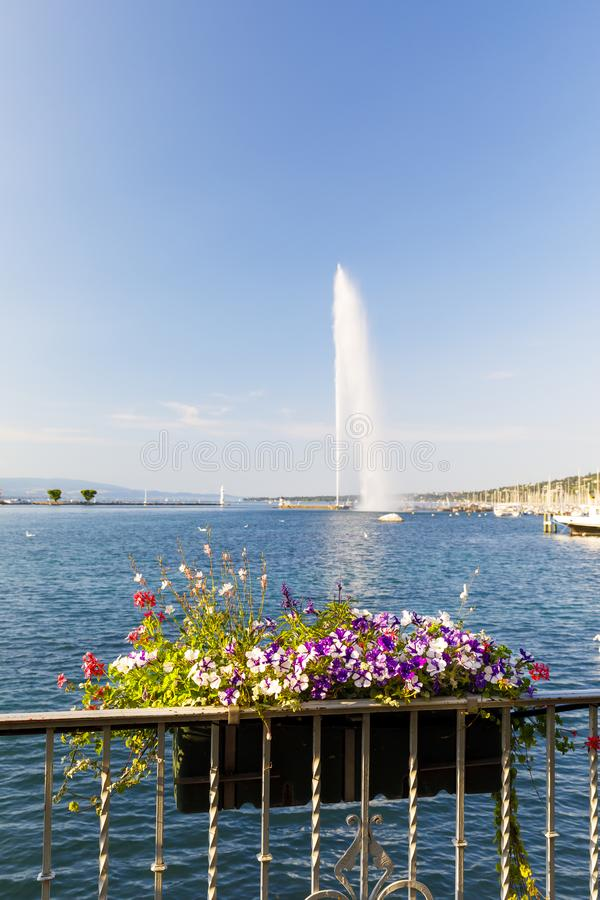 Flower basket and fountain Jet d`eau in Geneva, Switzerland royalty free stock photo
