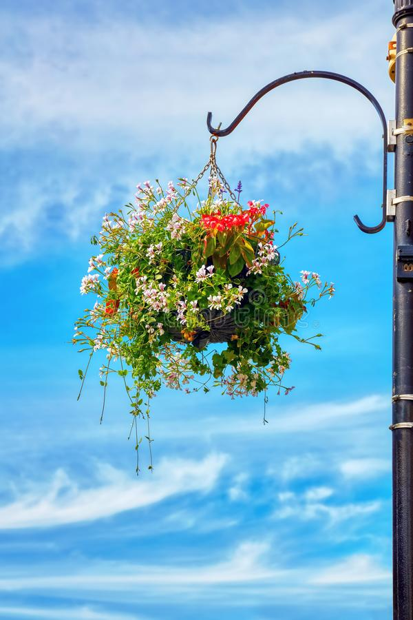 Flower basket hanging from a street lamp post against a blue sky background. With clouds royalty free stock photo