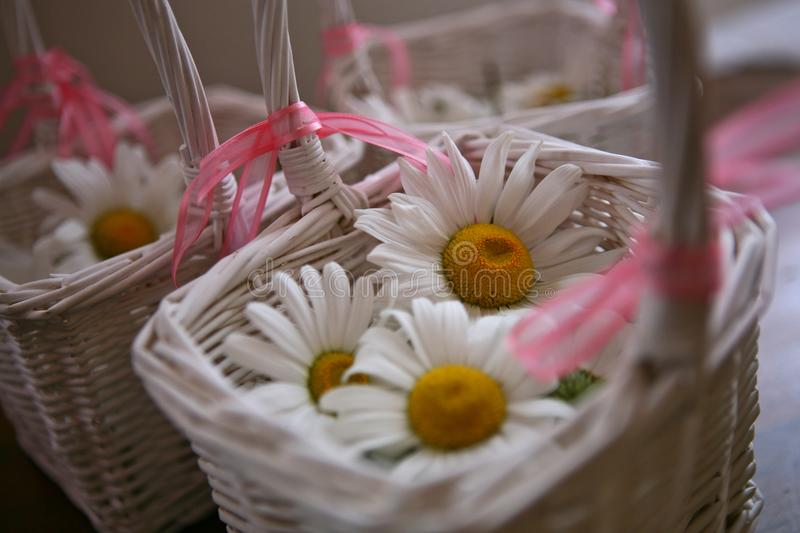 White basket with white flowers royalty free stock photos