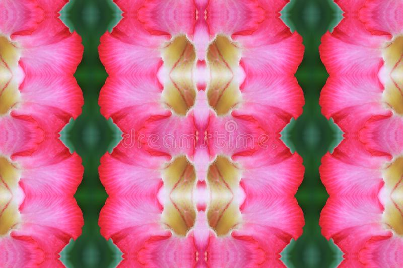 Flower beautiful seamless concept pattern for background vector illustration