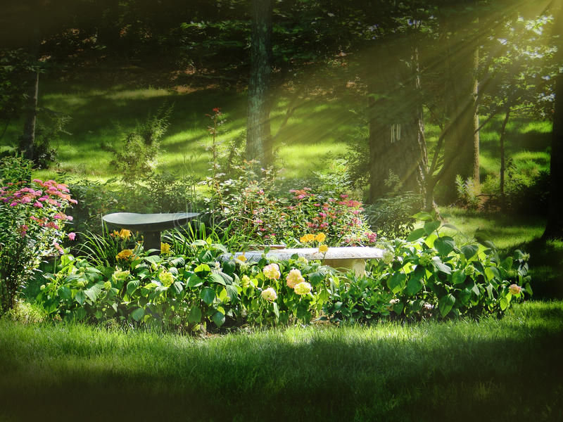 Flower Bed royalty free stock photography