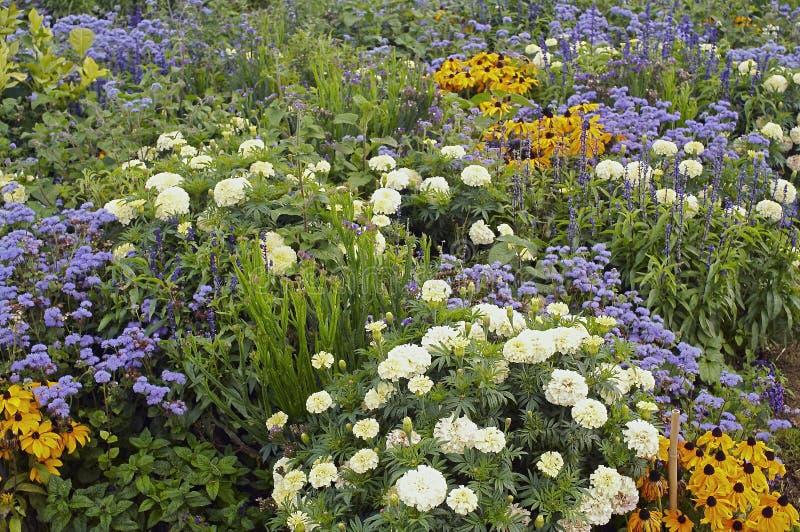 Flower bed. Vaux le Vicomte castle, flower bed detail royalty free stock photo