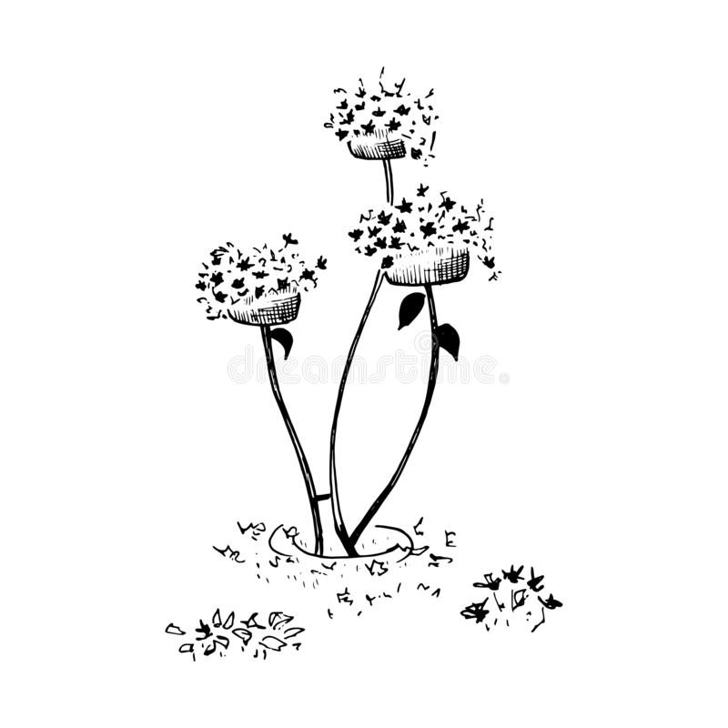 Flower bed with flowers. Hand drawn sketch style garden bed, street vase with flowers. Vector illustration. stock illustration
