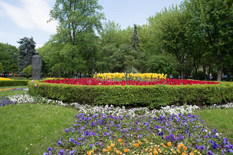 Flower bed in a formal garden. Beautiful flower bed in a formal garden , BraÈ™ov city , Romania royalty free stock photography