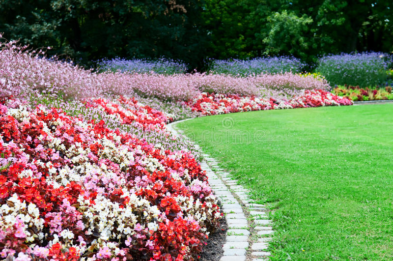 Download Flower bed and green grass stock image. Image of blossom - 32914397