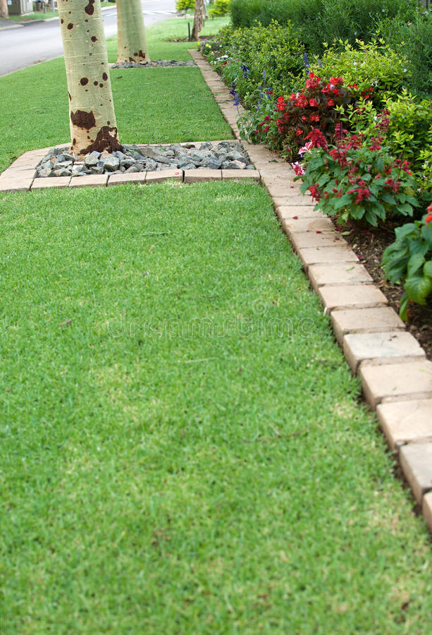 Flower bed and lawn edging. A neat fully grown flower bed separated by a row of bricks from the lawn stock photos
