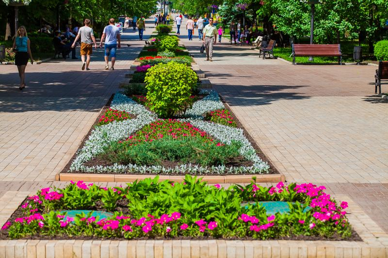 Flower bed in urban public place in Donetsk royalty free stock images