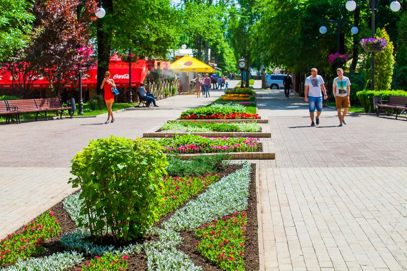 Flower bed in urban public place in Donetsk stock photo