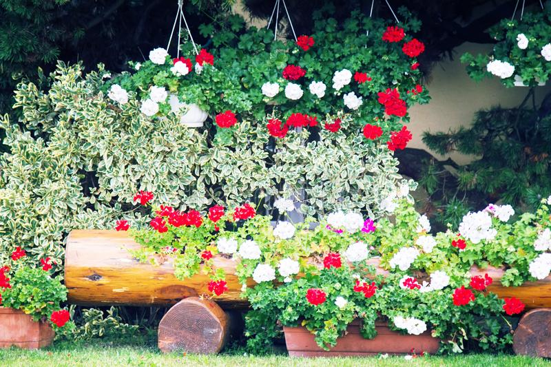 Flower beds in yards, on window sills. And balconies. Amateur floriculture of French cities stock images