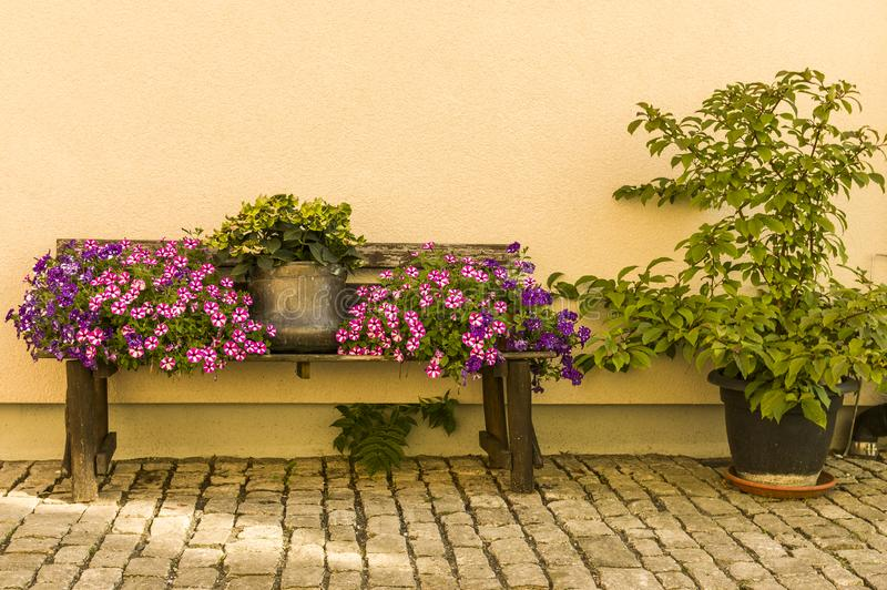 Flower bench with flowerpot and colorful flowers in front of bright house wall on cobblestones stock photos