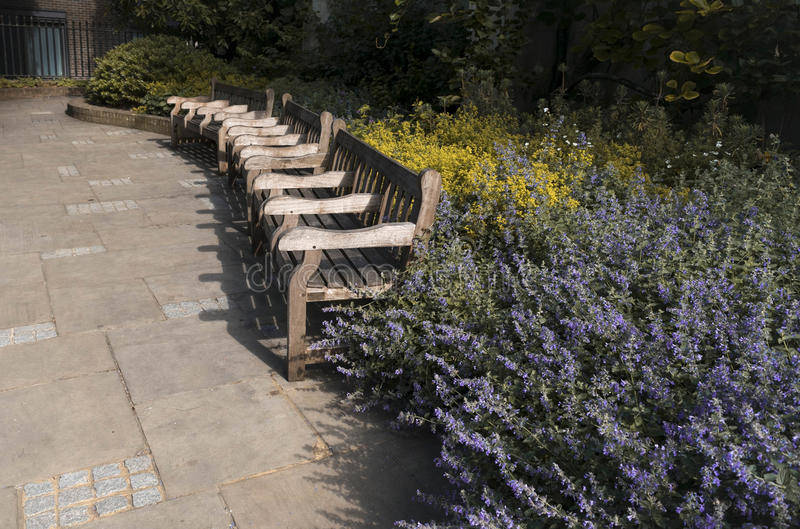 Flower and benches. Benches in leading lines and flowers stock photography