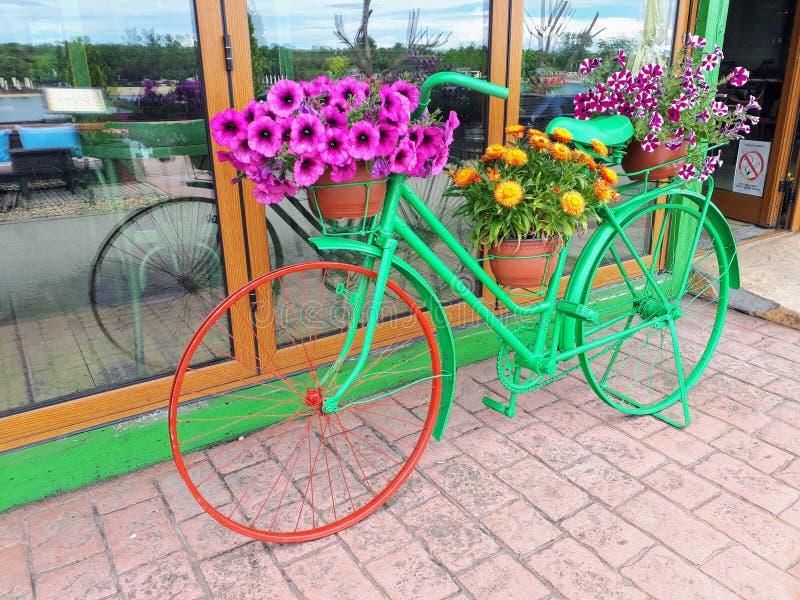 Flower Bicycle On River Island Ada. Belgrade Serbia Spring Bueaty stock image