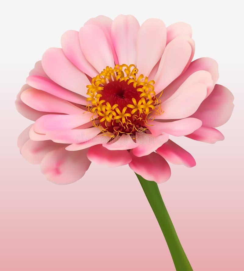 Download Flower Bloom Background stock vector. Image of delicate - 22950622