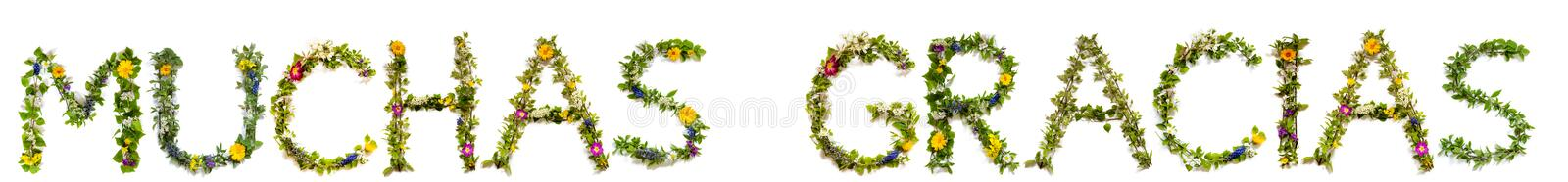 Flower And Blossom Letter Building Word Muchas Gracias Means Thank You. Flower, Branches And Blossom Letter Building Spanish Word Muchas Gracias Means Thank You stock images