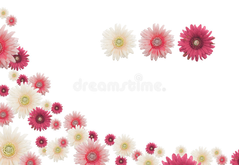 Flower border. Horizontal white, pink en red flower border
