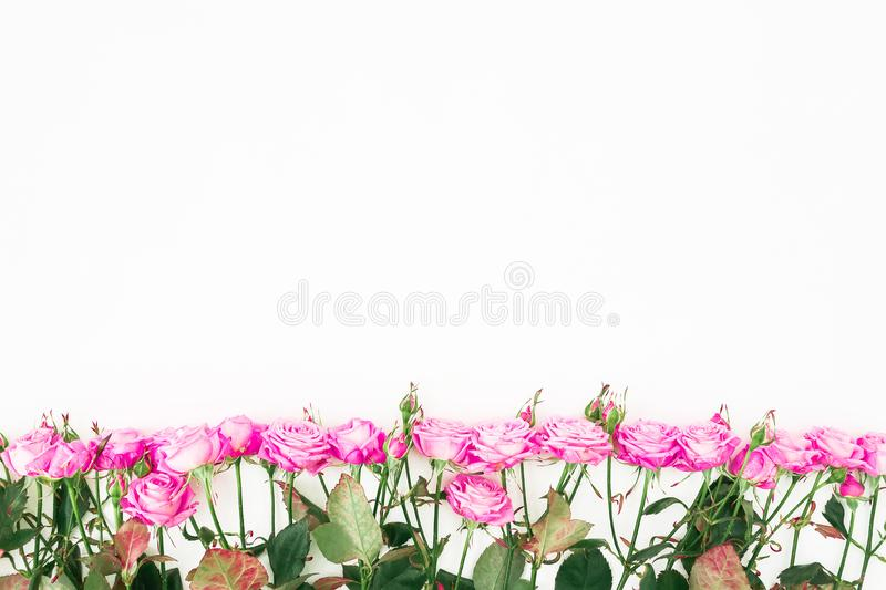 Flower border pattern of pink roses, branches and leaves on white background. Flat lay, Top view. royalty free stock images