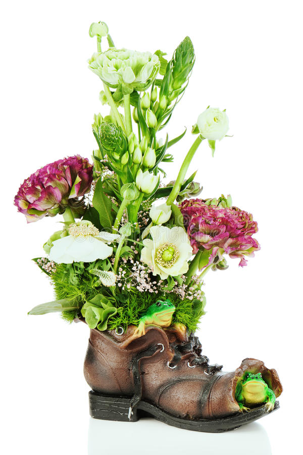 Flower bouquet arrangement centerpiece in old shoe with frogs. Isolated on white background stock photography