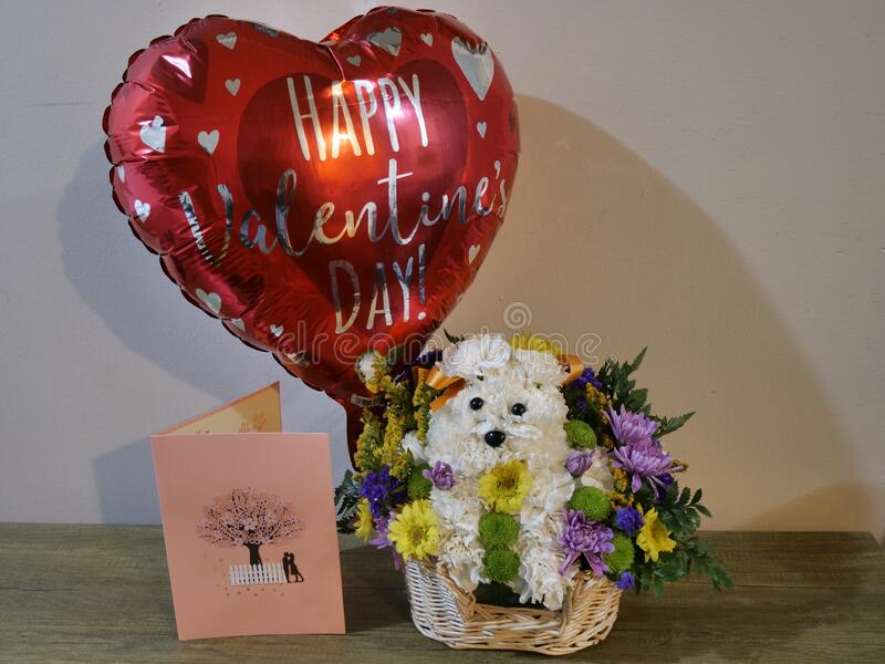 Flower bouquet, arrangement, decoration in basket in form of dog, puppyvalentine balloon and card. Beautiful colorful flower bouquet, arrangement, decoration in stock photography