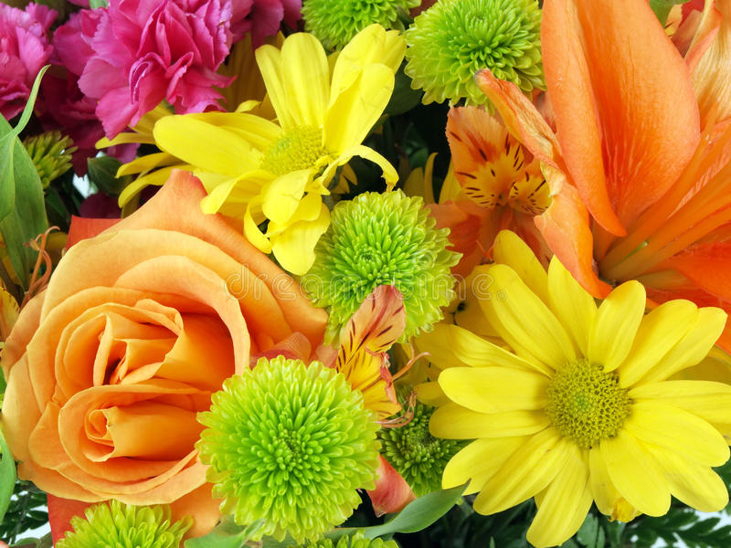 Download Flower Bouquet Background 11 Stock Photo - Image of flower, marigold: 21181208