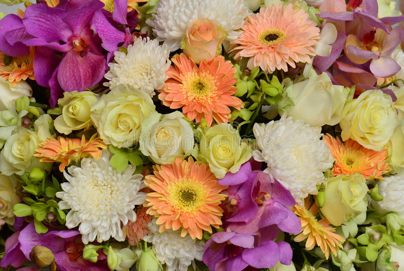 Flower bouquet background stock image. Image of bunch - 53009279