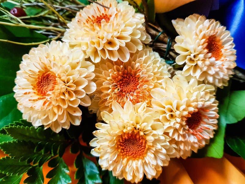 A flower bouquet. A colourful bouquet for the bride stock image