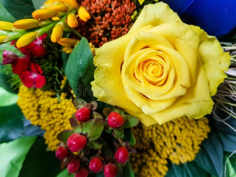 A flower bouquet. A colourful bouquet for the bride royalty free stock photography