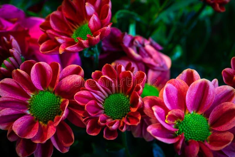 Flower bouquet decoration stock image