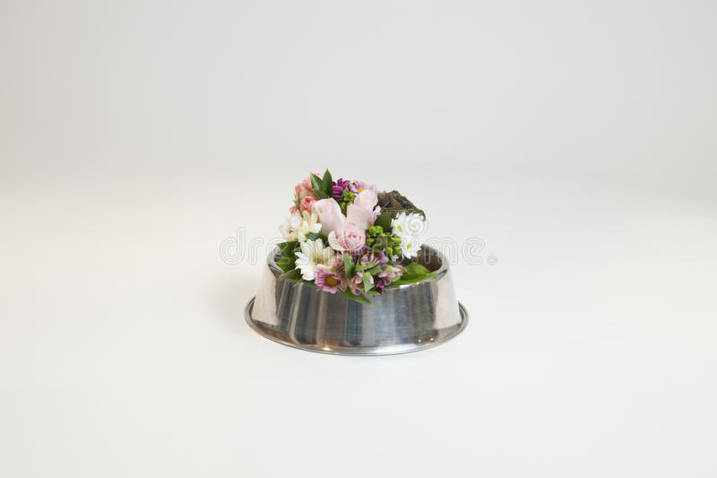 Download Flower Bouquet With Dog Bowl Stock Photo - Image of flowers, floral: 83724120