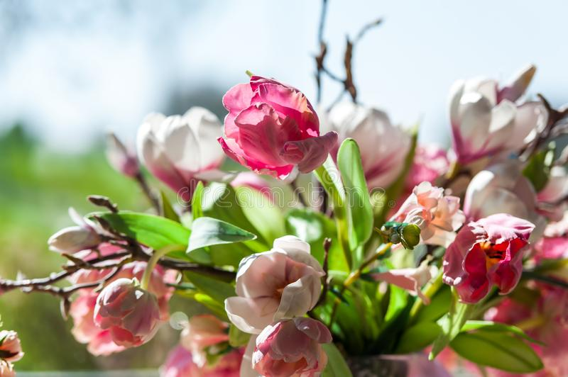 Flower bouquet in front of big window with blue sky background royalty free stock image