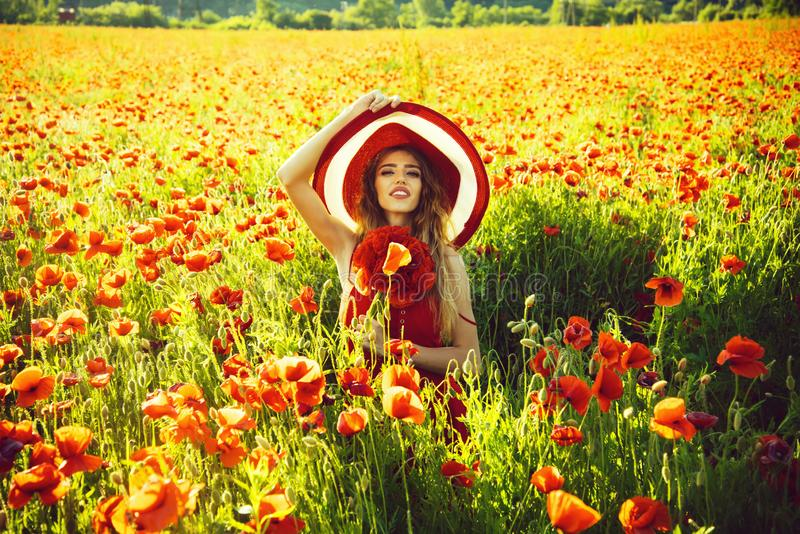 Flower bouquet at smiling girl in retro hat, poppy field. Poppy. flower bouquet at smiling girl with long curly hair in red dress and retro hat in field on sunny stock photos