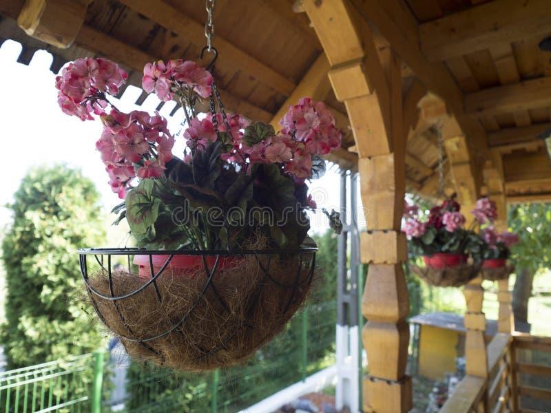 Flower bowls at Pasarea Monastery, Romania royalty free stock photography