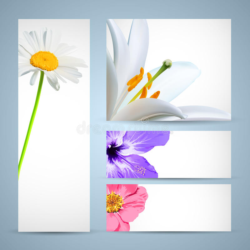 Download Flower Brochure Template stock vector. Image of aroma - 22877024