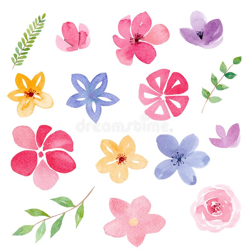 Flower buds and foliage watercolor raster illustrations set stock illustration