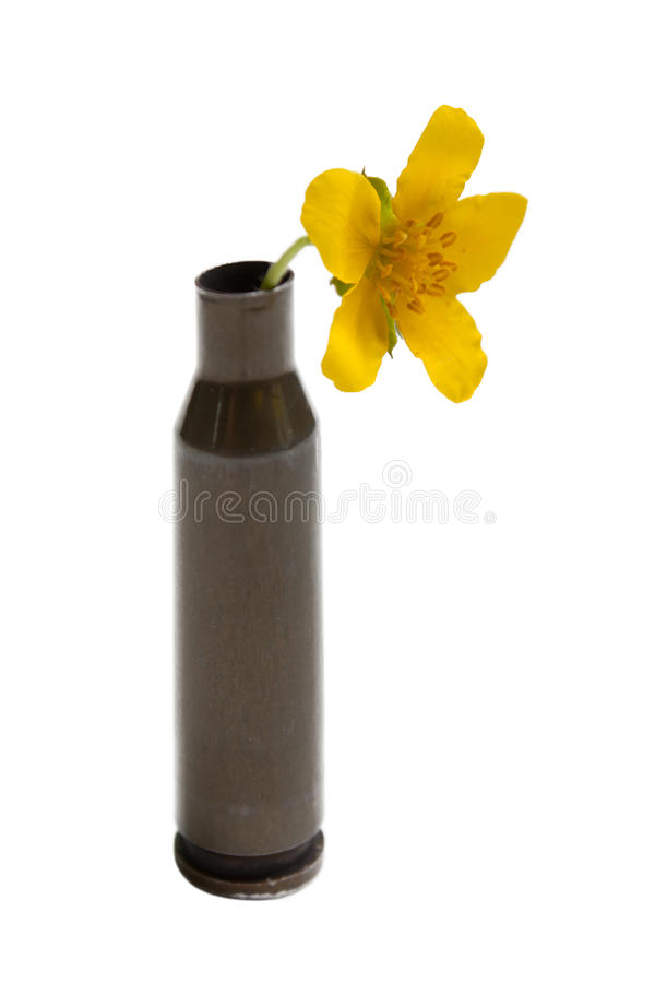 Flower In Bullet Royalty Free Stock Photo