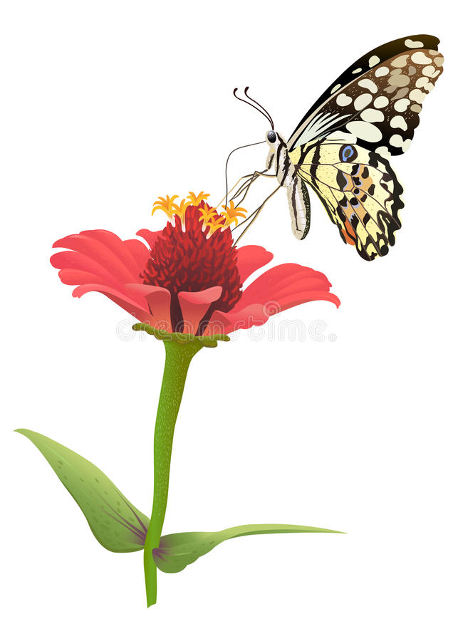 Download Flower And Butterfly Vector. Stock Photography - Image: 31520882