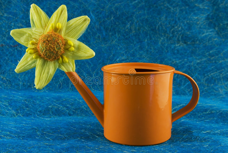 Flower can. Paper flower in a watern can royalty free stock photography
